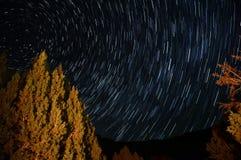 Ίχνη αστεριών γύρω από το αστέρι πόλων με ένα δέντρο που φωτίζεται από μια πυρά προσκόπων Στοκ Φωτογραφίες