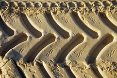 Ίχνη ελαστικών αυτοκινήτου στην κίτρινη άμμο, πρωί στοκ φωτογραφίες