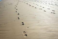 Ίχνη και ίχνη στην αμμώδη παραλία at low tide - 1 στοκ εικόνες