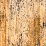 Ίχνη κανθάρου φλοιών ζωύφιου στο δέντρο στοκ εικόνα με δικαίωμα ελεύθερης χρήσης