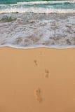 ίχνη παραλιών αμμώδη Στοκ εικόνα με δικαίωμα ελεύθερης χρήσης