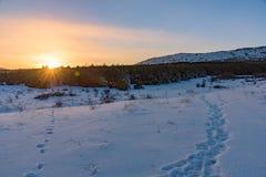 Ίχνη που οδηγούν στο δάσος κάτω από το βουνό στο ηλιοβασίλεμα ρ Στοκ Φωτογραφίες