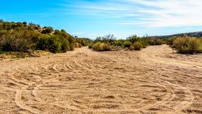 Ίχνη ρύπου που χρησιμοποιούνται με τα διαγώνια ποδήλατα χώρας στο ημι τοπίο ερήμων της Αριζόνα Στοκ Φωτογραφίες