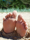 Ίχνη στην άμμο θαλασσίως στοκ φωτογραφίες με δικαίωμα ελεύθερης χρήσης