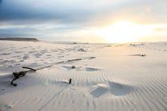 Ίχνη στην άμμο στο ηλιοβασίλεμα στο Καίηπ Τάουν στοκ εικόνες με δικαίωμα ελεύθερης χρήσης
