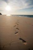 Ίχνη στην άμμο Στοκ Εικόνα