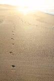 Ίχνη στην άμμο Στοκ φωτογραφίες με δικαίωμα ελεύθερης χρήσης