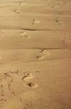 Ίχνη στην άμμο Στοκ Φωτογραφίες