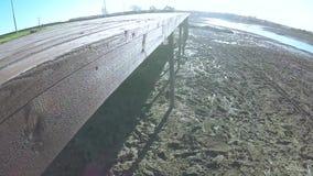 Ίχνη στη λάσπη του ποταμού απόθεμα βίντεο