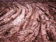 Ίχνη στη λάσπη Στοκ φωτογραφία με δικαίωμα ελεύθερης χρήσης