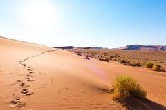 Ίχνη στους αμμόλοφους άμμου Sossusvlei, εθνικό πάρκο Namib Naukluft, έρημος Namib, φυσικός προορισμός ταξιδιού στη Ναμίμπια, Αφρι Στοκ Εικόνες