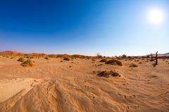 Ίχνη στους αμμόλοφους άμμου Sossusvlei, εθνικό πάρκο Namib Naukluft, έρημος Namib, φυσικός προορισμός ταξιδιού στη Ναμίμπια, Αφρι Στοκ φωτογραφία με δικαίωμα ελεύθερης χρήσης
