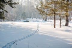 Ίχνη στο χιόνι Στα ξύλινα ίχνη στο χιόνι του σκιέρ Στοκ Φωτογραφία