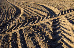 Ίχνη τρακτέρ γεωργίας στο χώμα αγροτικών τομέων Στοκ φωτογραφίες με δικαίωμα ελεύθερης χρήσης