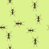 Ίχνη των μυρμηγκιών Στοκ φωτογραφία με δικαίωμα ελεύθερης χρήσης