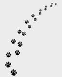 Ίχνη των σκυλιών 2 ελεύθερη απεικόνιση δικαιώματος