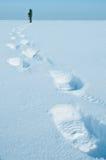 ίχνη χιονιού Στοκ εικόνες με δικαίωμα ελεύθερης χρήσης