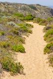 Ίχνος, άμμος και βλάστηση σε Arrifana Στοκ φωτογραφία με δικαίωμα ελεύθερης χρήσης
