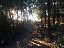 Ίχνος ηλιοβασιλέματος στοκ φωτογραφία με δικαίωμα ελεύθερης χρήσης