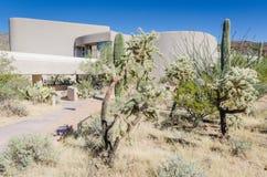 Ίχνος κήπων κάκτων - εθνικό πάρκο Saguaro - AZ Στοκ φωτογραφία με δικαίωμα ελεύθερης χρήσης