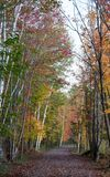 Ίχνος και δέντρα με τα κόκκινα και πορτοκαλιά φύλλα κατά τη διάρκεια του ινδικού καλοκαιριού στο Κεμπέκ, Καναδάς στοκ εικόνες