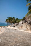 Ίχνος καρύδων Lingshui νησιών ορίου Στοκ Φωτογραφίες