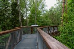 Ίχνος κορωνών δέντρων σε Anyksciai Λιθουανία Στοκ Εικόνες