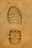 Ίχνος μποτών με τα σκυλιά έλκηθρου στην υγρή άμμο Στοκ Εικόνες