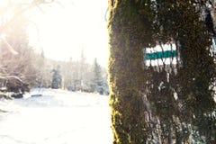 Ίχνος σημαδιών Στοκ Εικόνες