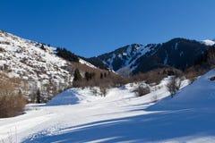 Ίχνος σκι στα βουνά του Καζακστάν Στοκ Εικόνα