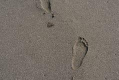 Ίχνος στην άμμο στην παραλία Στοκ Φωτογραφία