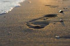 Ίχνος στην άμμο στενό σε επάνω ηλιοβασιλέματος Στοκ Φωτογραφίες