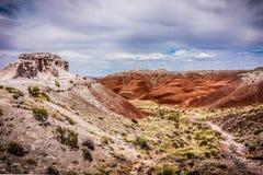Ίχνος στη χρωματισμένη έρημο, Αριζόνα Στοκ Εικόνες