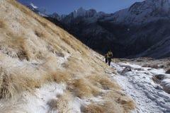 Ίχνος στρατόπεδων βάσεων Annapurna το χειμώνα Στοκ Φωτογραφία