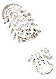 ίχνος σφραγίδων Στοκ Φωτογραφία