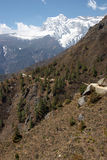 ίχνος του Νεπάλ βουνών των  στοκ φωτογραφίες