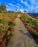Ίχνος φθινοπώρου, ΑΜ Πιό βροχερό εθνικό πάρκο, πολιτεία της Washington στοκ εικόνες