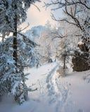 Ίχνος χειμερινών βουνών μεταξύ των χιονισμένων δέντρων Στοκ φωτογραφία με δικαίωμα ελεύθερης χρήσης