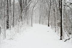 ίχνος χιονιού κάλυψης Στοκ εικόνες με δικαίωμα ελεύθερης χρήσης