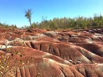 Ίχνος Badlands Cheltenham, Καναδάς Στοκ φωτογραφία με δικαίωμα ελεύθερης χρήσης