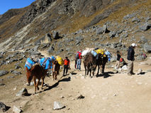 Ίχνος Inca Salkantay, Περού Στοκ εικόνες με δικαίωμα ελεύθερης χρήσης