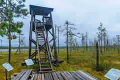 Ίχνος Tunturiaapa, στο εθνικό πάρκο pyha-Luosto Στοκ φωτογραφίες με δικαίωμα ελεύθερης χρήσης