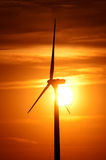αέρας αγροτικού ηλιοβα&si Στοκ εικόνα με δικαίωμα ελεύθερης χρήσης