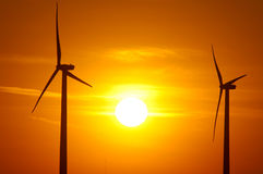 αέρας αγροτικού ηλιοβα&si Στοκ εικόνες με δικαίωμα ελεύθερης χρήσης