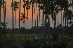 αέρας ηλιοβασιλέματος θύελλας αφαίρεσης στοκ εικόνες με δικαίωμα ελεύθερης χρήσης