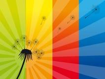 αέρας πικραλίδων απεικόνιση αποθεμάτων