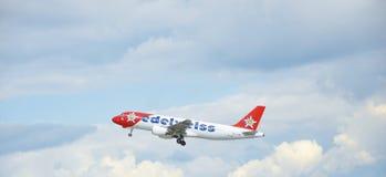 Αέρας Edelweiss Στοκ εικόνες με δικαίωμα ελεύθερης χρήσης