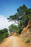 αέρα μπλε σύννεφων ουρανός της οδικής Σικελίας πανοράματος χωρών ανοικτός Πεύκο-δέντρα και μπλε θάλασσα ηλικίας φωτογραφία Στοκ Φωτογραφίες