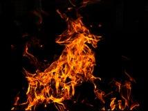 Αίγα πυρκαγιάς Στοκ φωτογραφία με δικαίωμα ελεύθερης χρήσης
