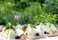 αίγα τυριών σπιτική Στοκ εικόνες με δικαίωμα ελεύθερης χρήσης
